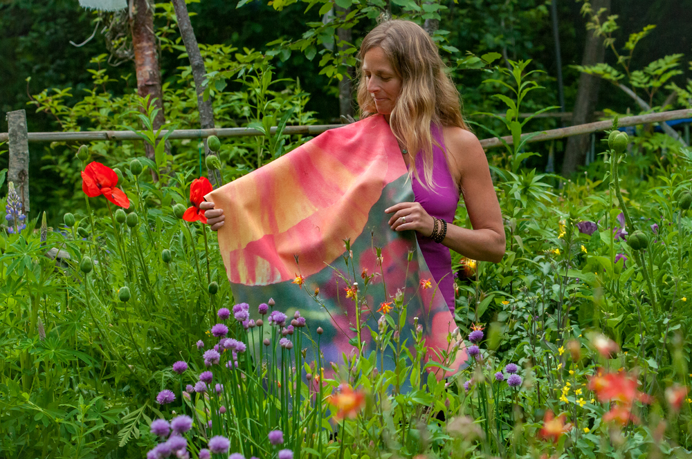 Poppy Shines Bright cape in garden.jpg