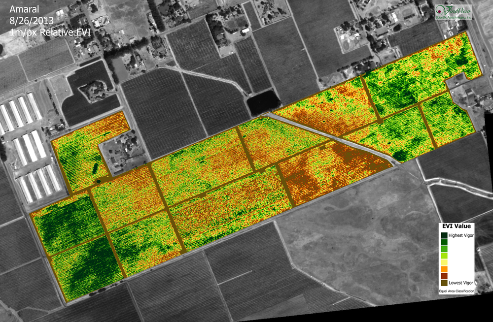 NDVI infrared map used to evaluate long-term health of vineyards.