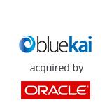 bluekai_oracle_home.jpg