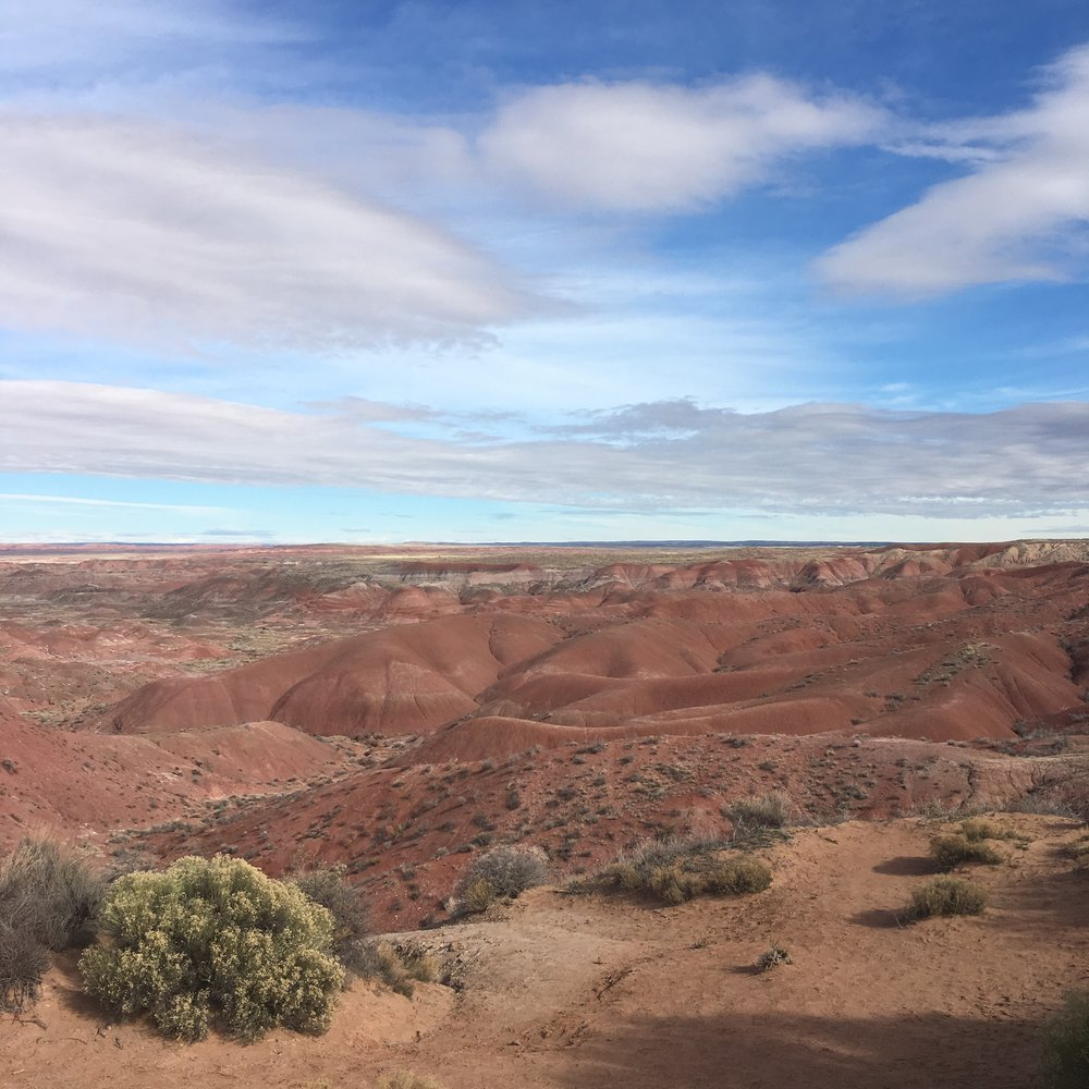 Painted Desert | Arizona