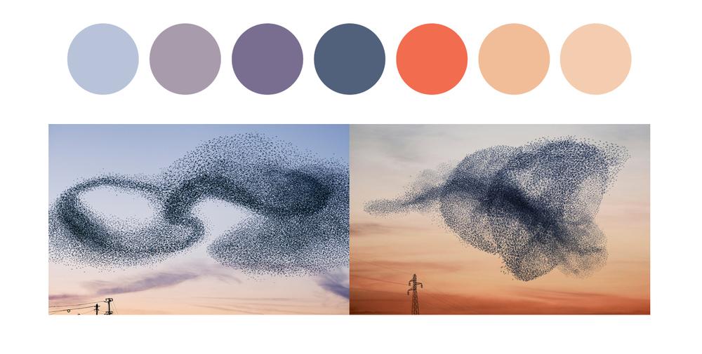 brand colours.jpg