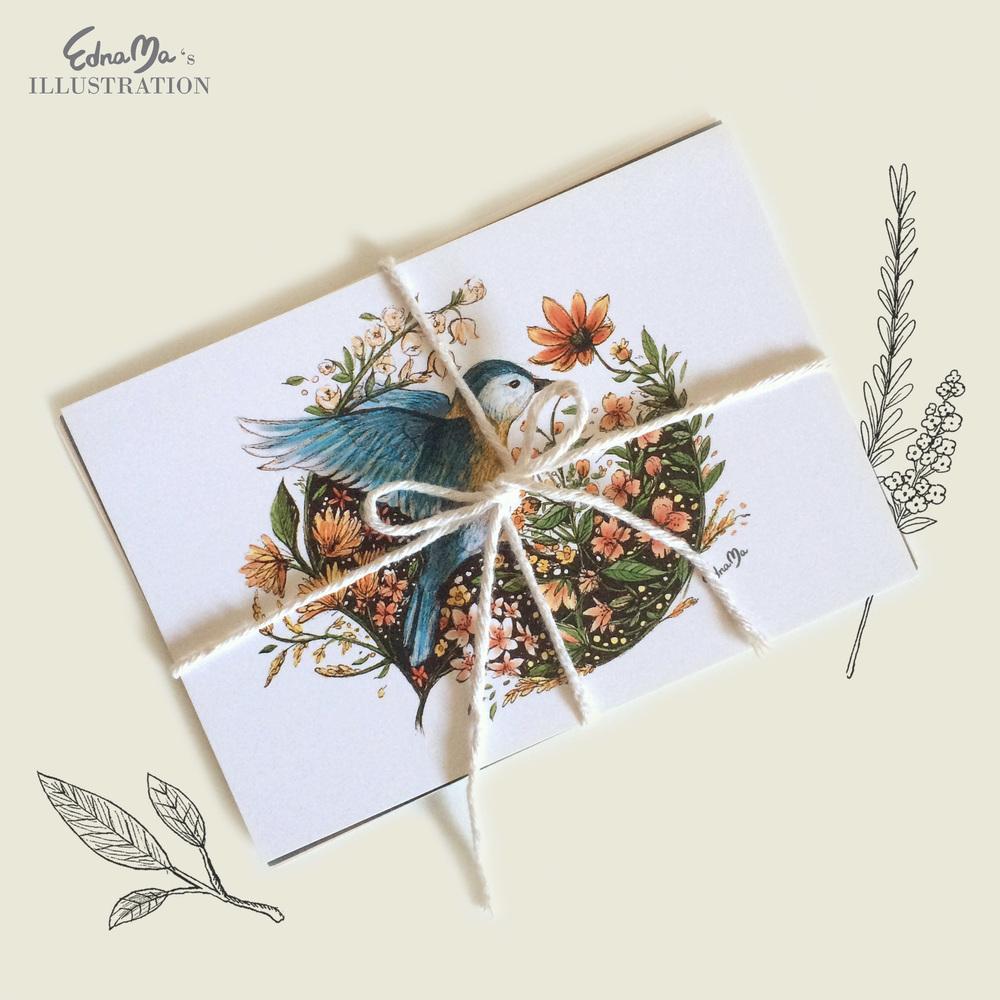 illustrated postcard pack.jpg