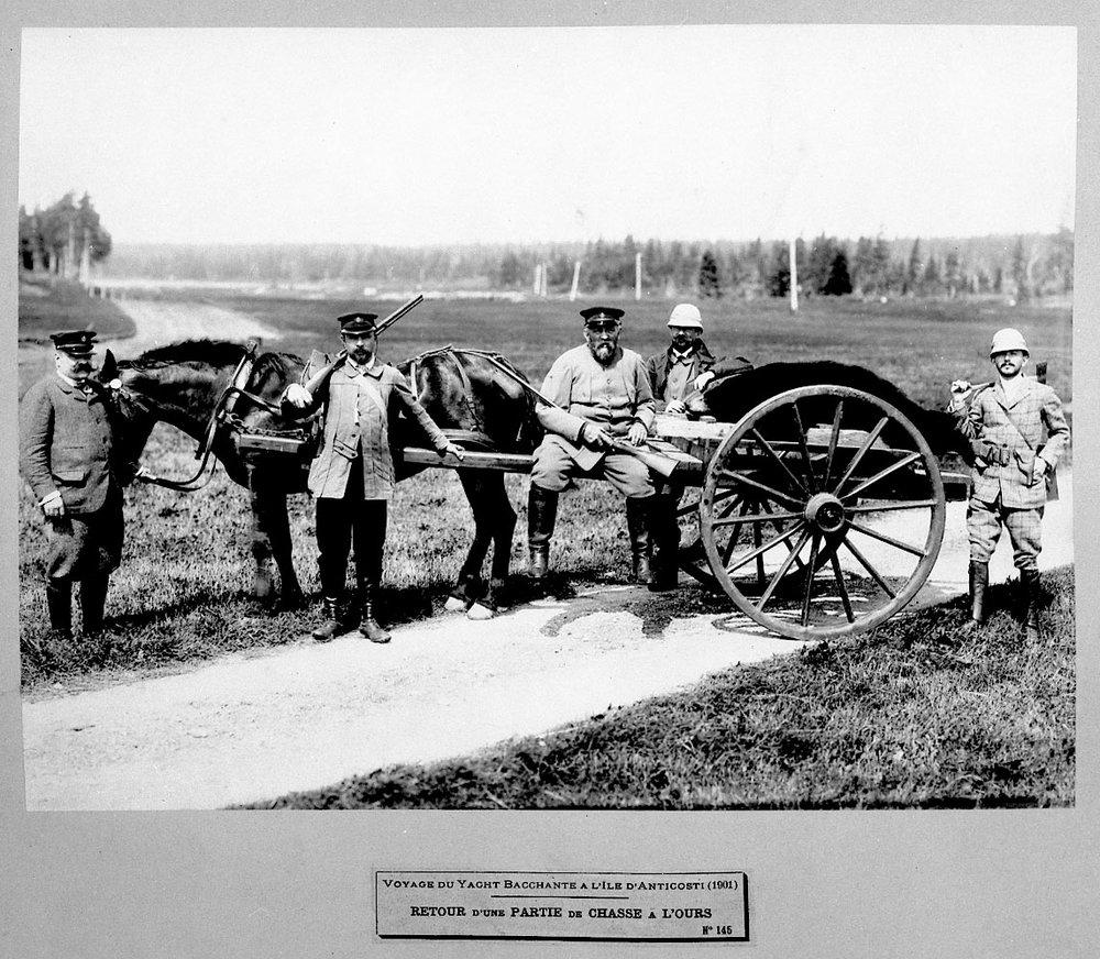 Une chasse à l'ours fructueuse pour Henri Menier, propriétaire de l'île à l'époque.