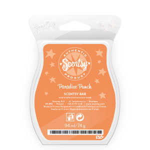 Paradise-Punch-Scentsy-Bar.jpg