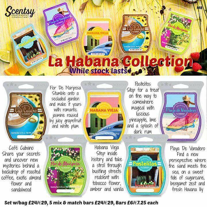 Habana-Collection-Scentsy-UK.jpg