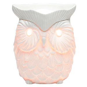 Whoot Owl Warmer