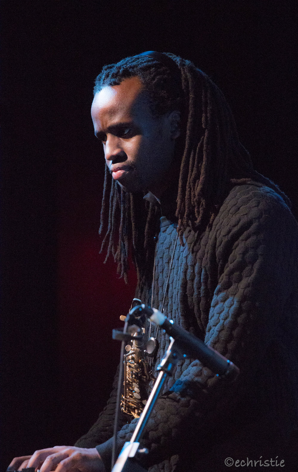 Erika Christie photography musician singer bass player, life onstage #afropunk #afrojam