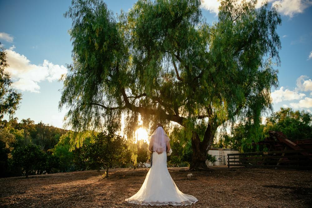 SAMANTHA_&_LUCAS_LEO_CARRILLO_LEAF_WEDDING_PHOTOGRAPHY_20147X9A9019.JPG