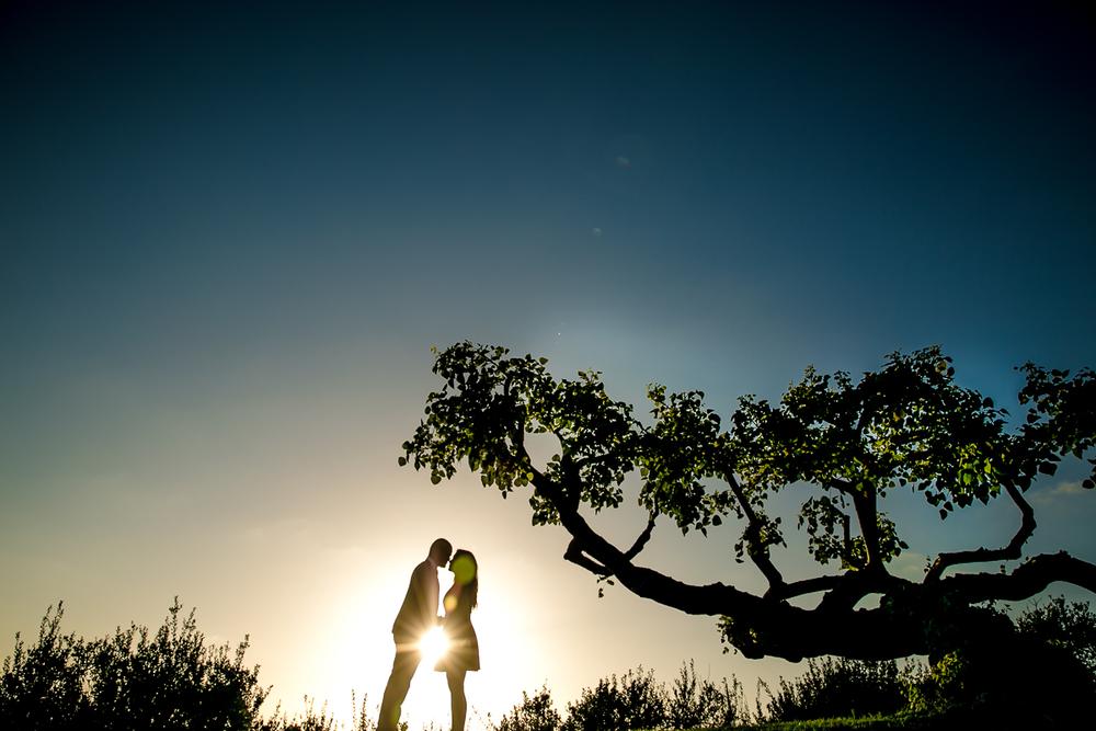 WEDDING SHERATON MARINA