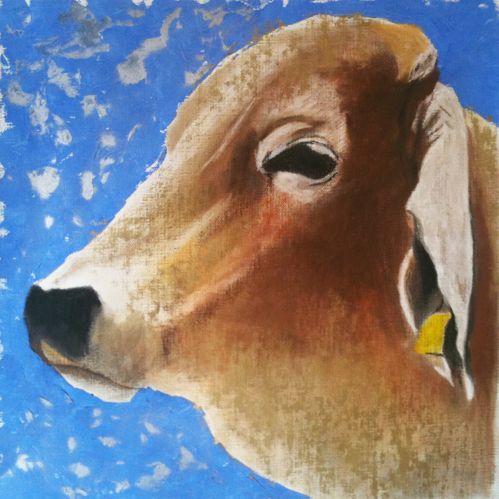 B-Bull  . Mixed media on canvas. 45 x 45 cm.  ©  2005 Ida Montague. Private collection, Holbrook, Australia.
