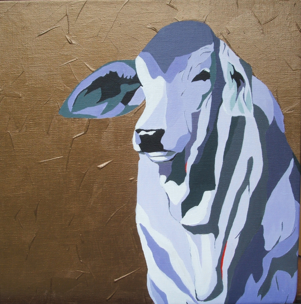 Cool Brahman.   Acrylic polymer on canvas. 40 x 40 cm.  ©   2006 Ida Montague  Private collection: Sunshine Coast