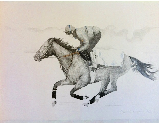 Frankel in Training  . Aqua pencil on paper. 56 x 76cm.  ©  2012 Ida Montague  Corporate collection: Goff Irish Bloodstock, Ireland.