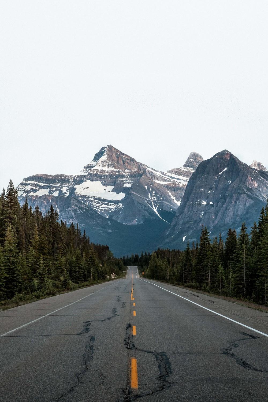 Jasper, Alberta |June 2015| 2 (1 of 1).jpg