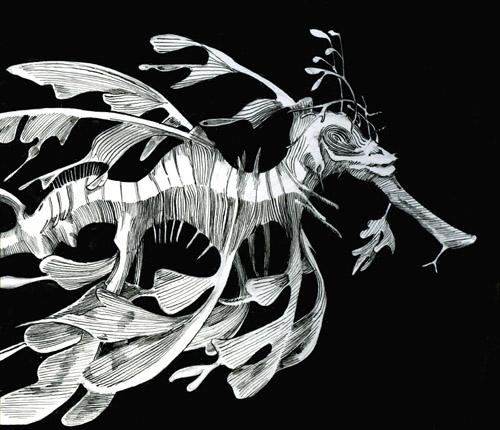 sea dragon.jpg