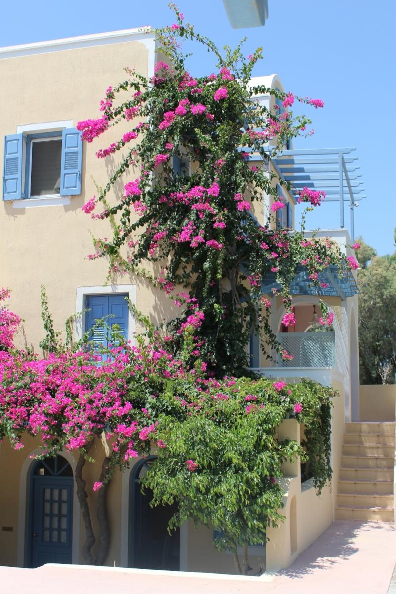 GenniferRose_SantoriniAirbnb