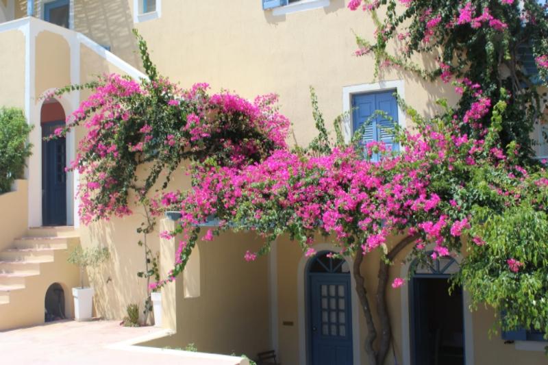 GenniferRose_SantoriniAirbnb1