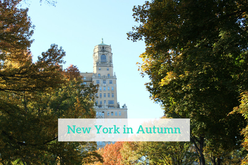 Gennifer Rose_New York in Autumn