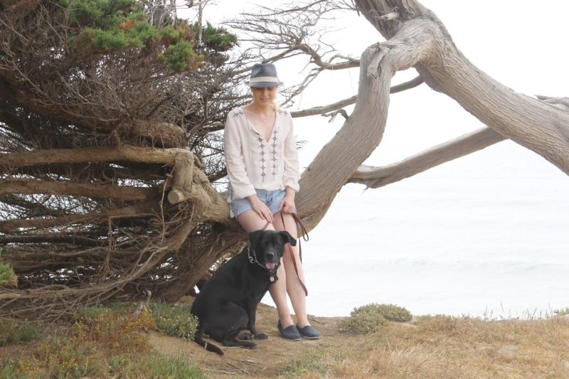 Gennifer Rose - Foggy Days on the Coast
