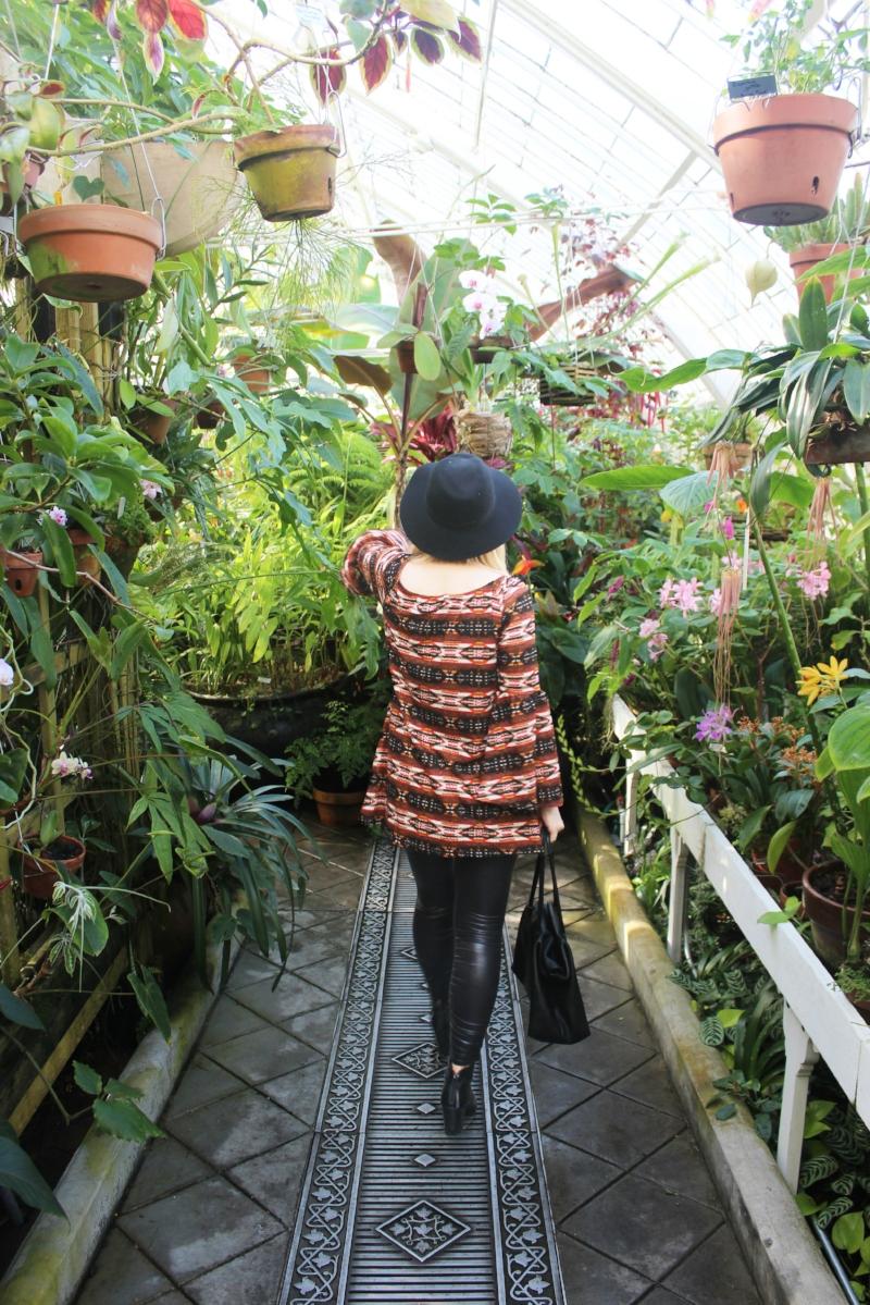 Gennifer Rose - Flower Conservatory