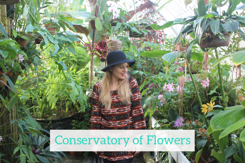Gennifer Rose - Conservatory of Flowers