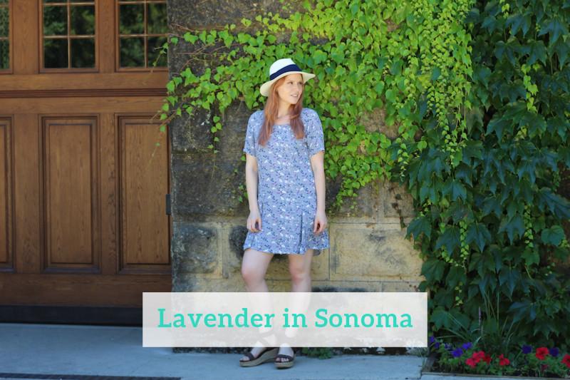 Gennifer Rose - Lavender in Sonoma