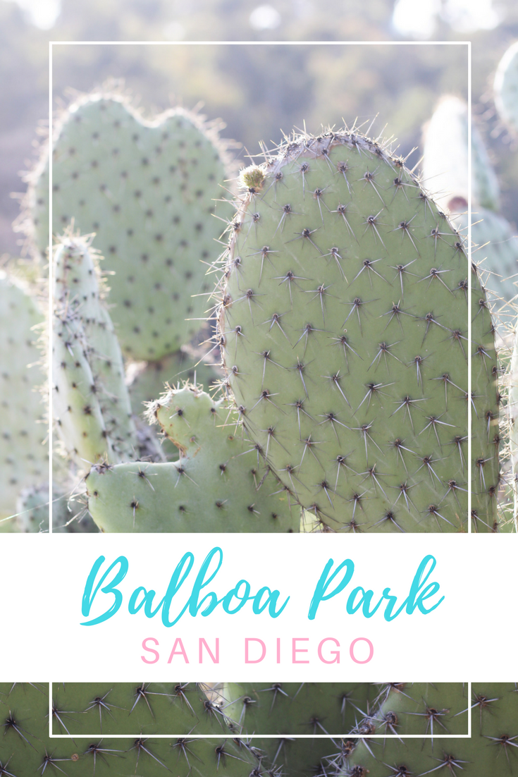 Gennifer Rose - Travel Guide to San Diego Zoo & Balboa Park