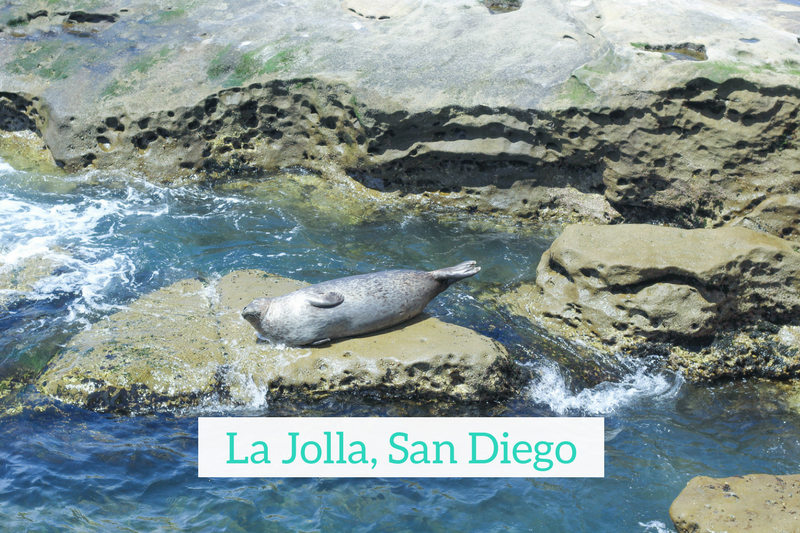 Gennifer Rose - Travel Guide to La Jolla