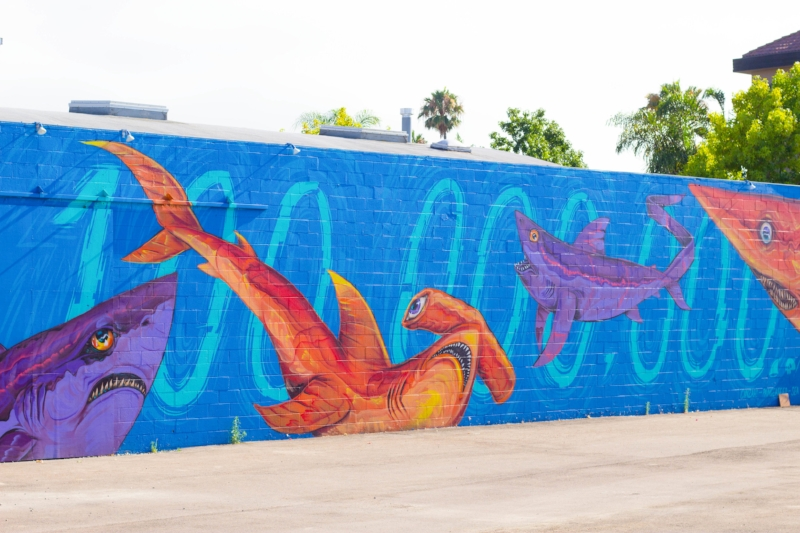 The Ultimate Guide to San Diego Murals