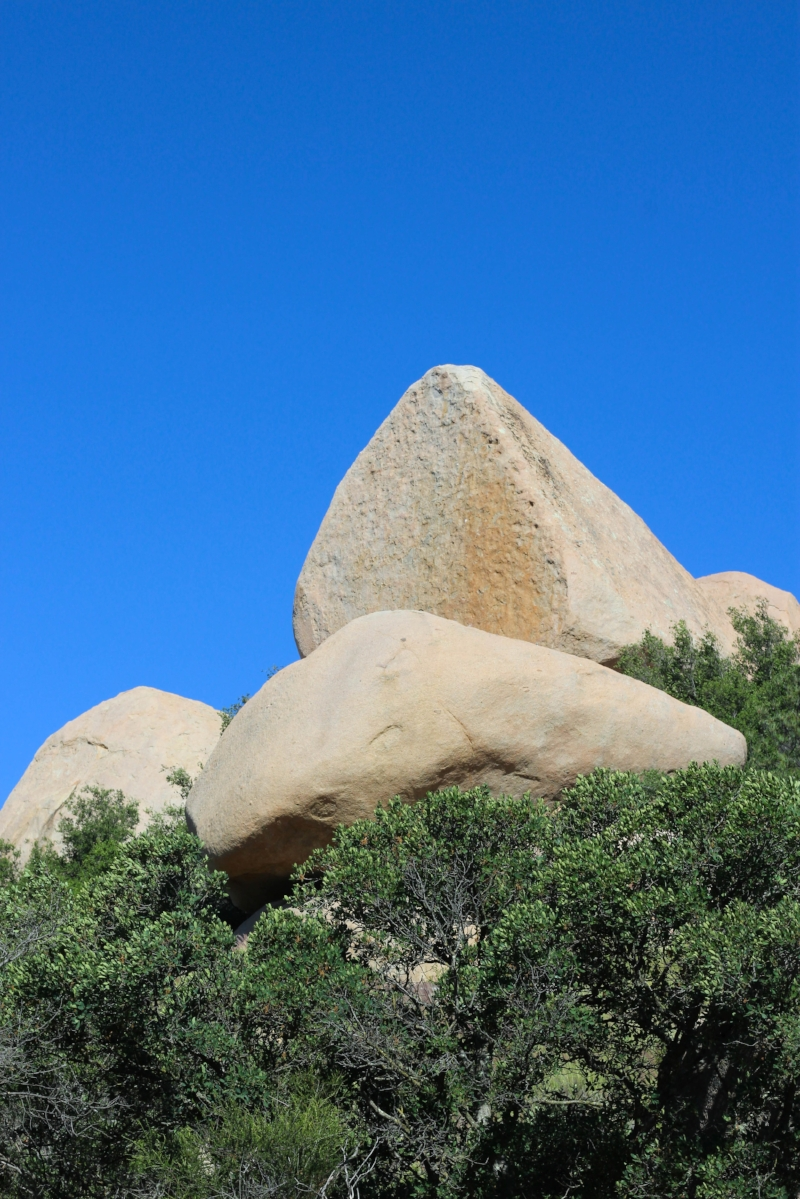 Gennifer Rose - Potato Chip Rock