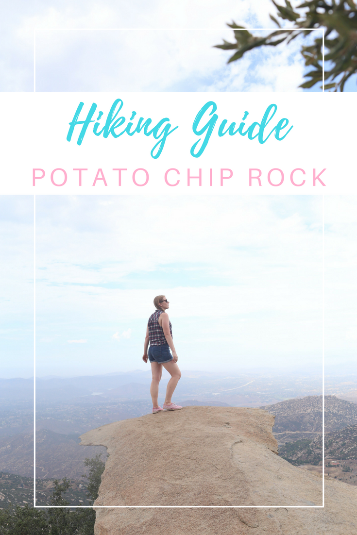 Gennifer Rose - Potato Chip Rock Pin