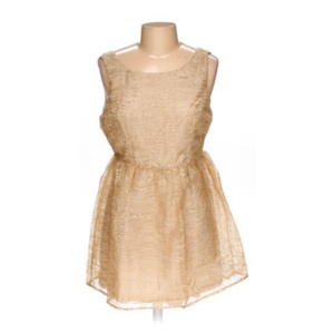 ca94146fdada Anthropologie Ark & Co. A-Line Champagne and Gold Dress