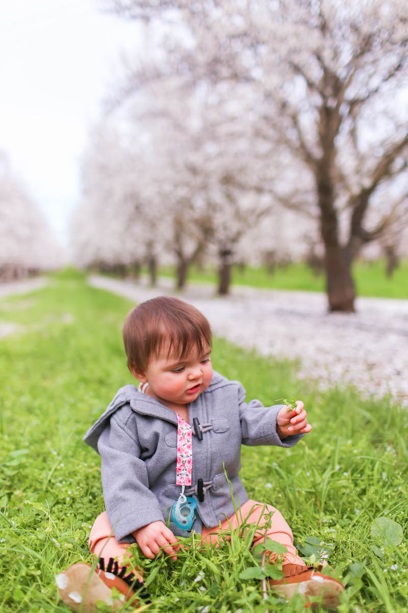Gennifer Rose_Where to Find the Blooming Almond Orchards in Northern California_12.jpg