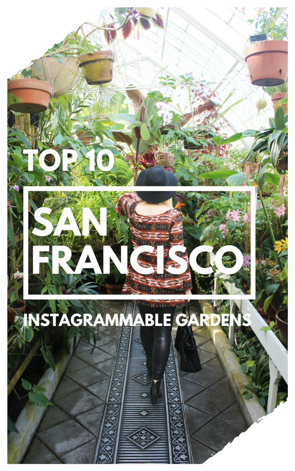 Top 10 Most Instagrammable Gardens in San Francisco