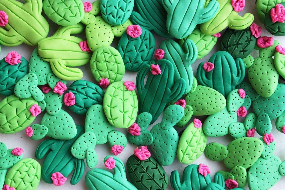 Cactus Refrigerator Magnets By Mkaybrinker