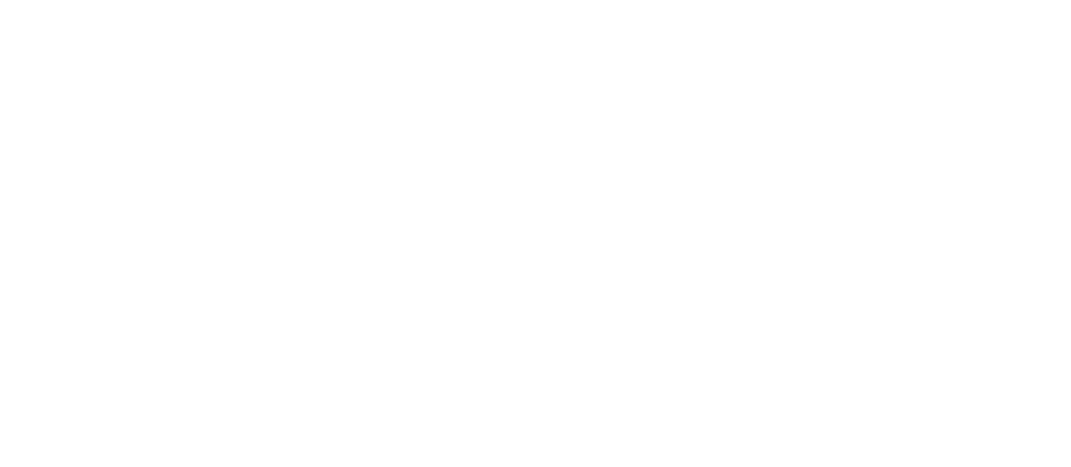 Advanced Property Services
