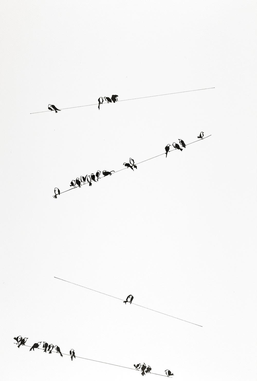 J-Schwartz-03.jpg