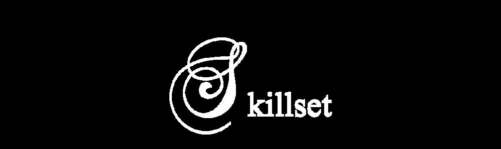 Skillset-3.png