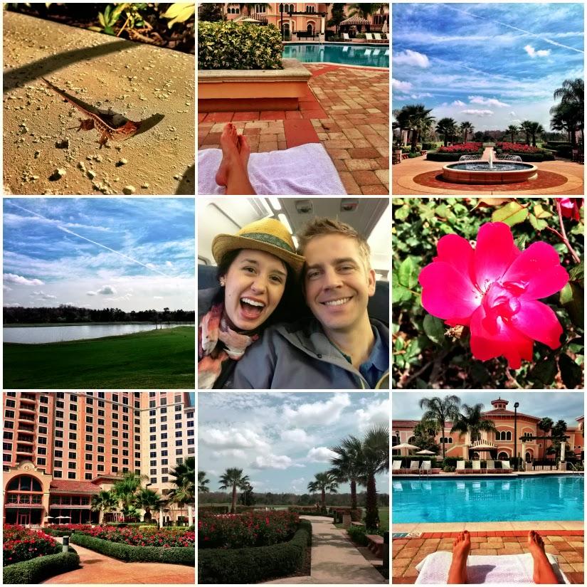 Orlando+Collage1.jpg