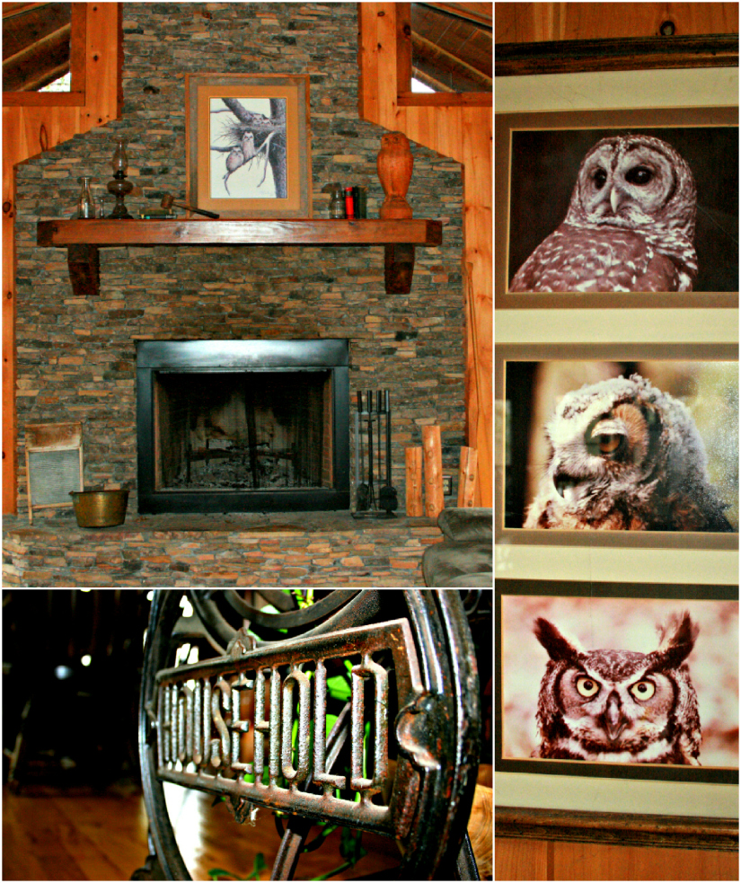 Owls3+Collage.jpg