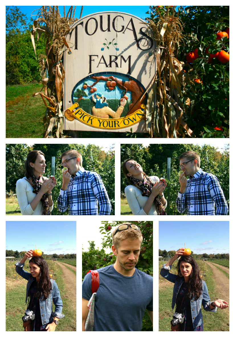 applecollage1.jpg