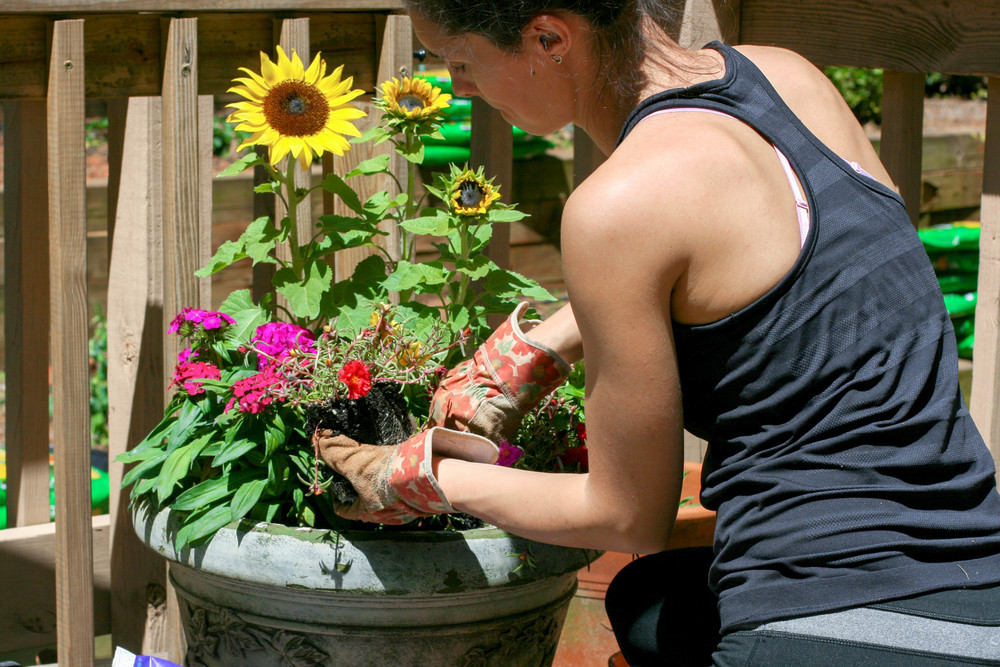 Planting a Container Pot.jpg