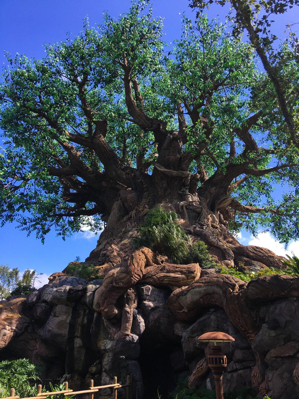 Disney-17.jpg