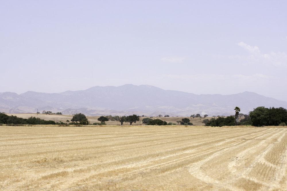 Santa Ynez17.jpg