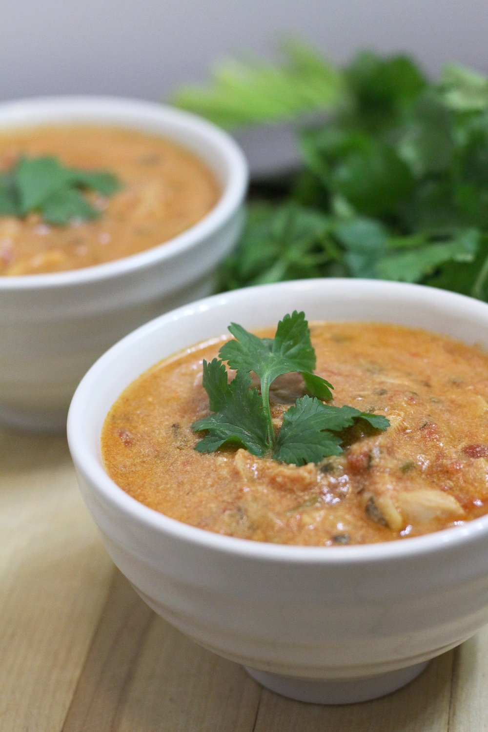 Chicken Tortilla Soup | My Engineered Nutrition