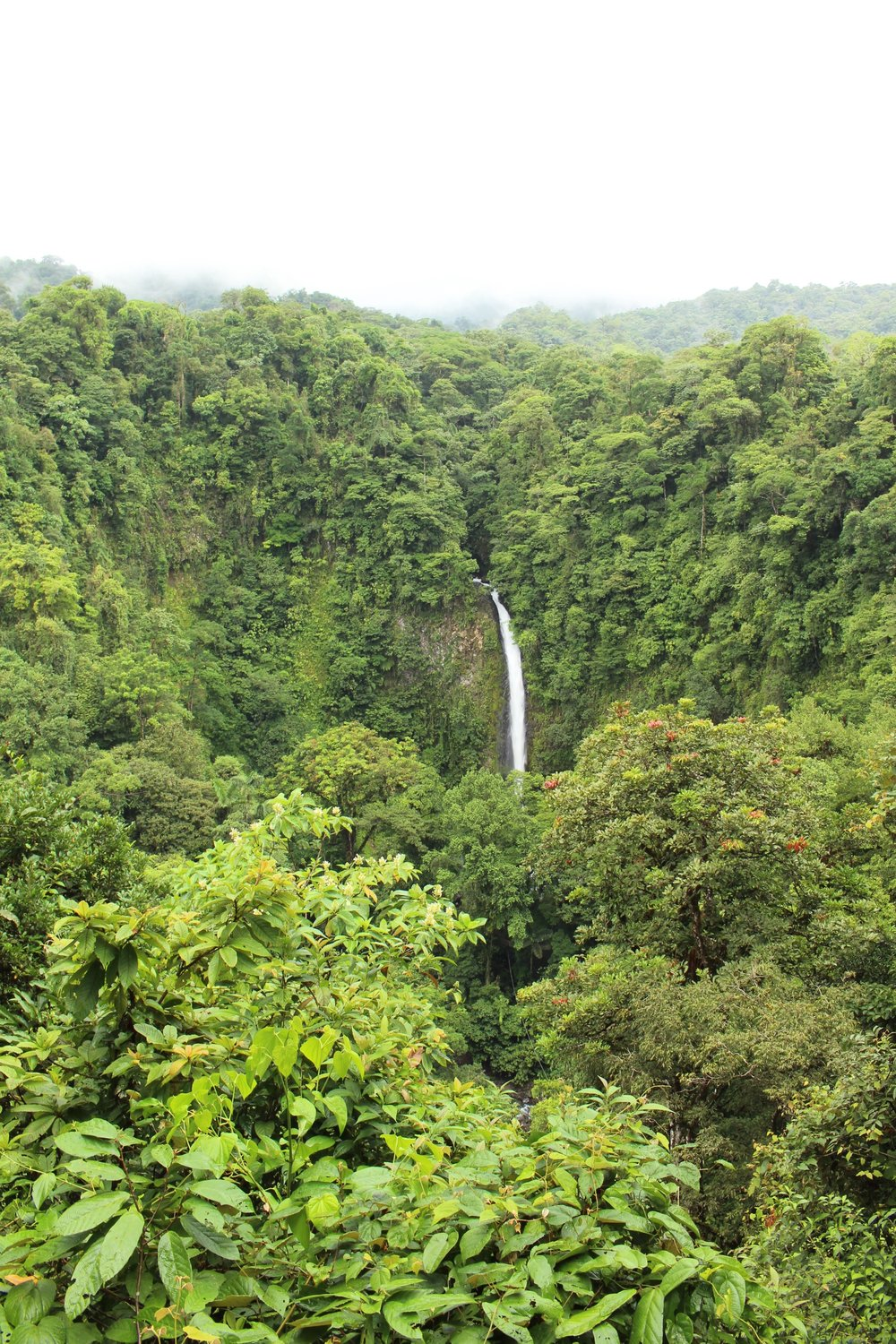 La Catarata Rio Fortuna (La Fortuna Waterfall)
