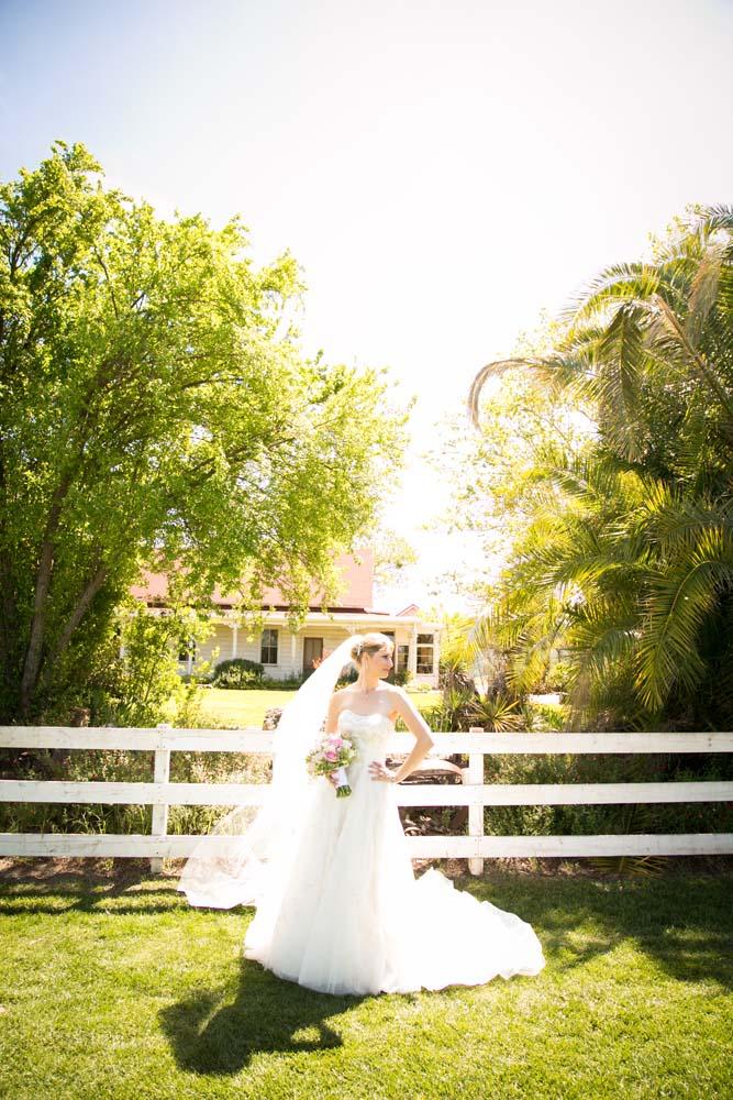 Ballentine Wedding 0282.jpg