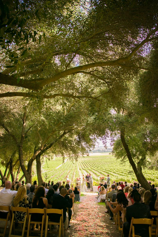 Still Waters Vineyards Wedding048.jpg