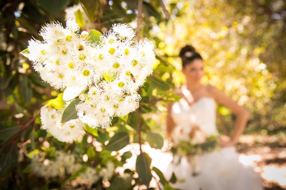 Dana Powers Barn Wedding022.jpg