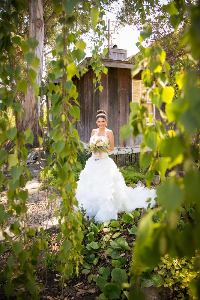 Dana Powers Barn Wedding026.jpg