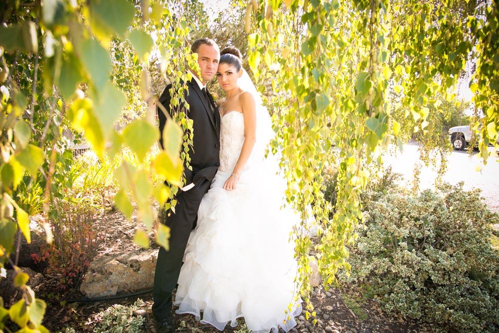 Dana Powers Barn Wedding075.jpg